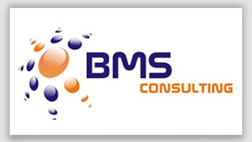logo bms consulting